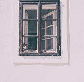 Op zoek naar de perfecte raamfolie?